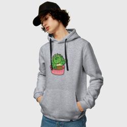 Кот-кактус