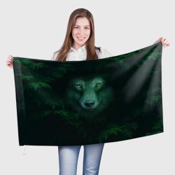 Сибирь. Лесной волк