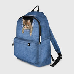 Котёнок в рюкзаке