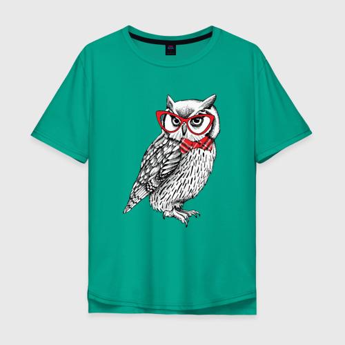 Мудрая сова в очках