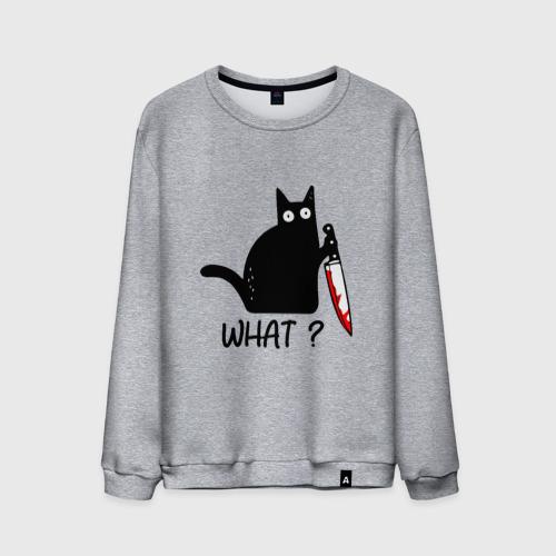 Мужской свитшот хлопок What cat Фото 01