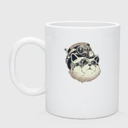 Кот Steampunk