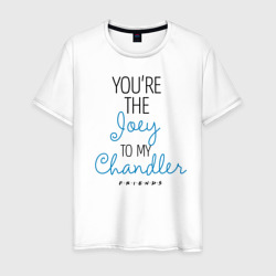 You`re the Joey to my Chandler