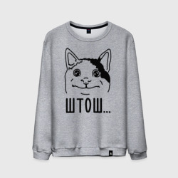 Штош... Вежливый котик мем