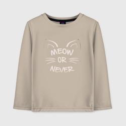 Мяу или никогда