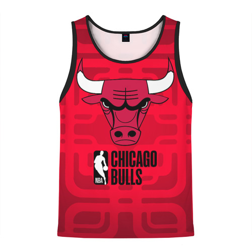 Chicago Bulls 23