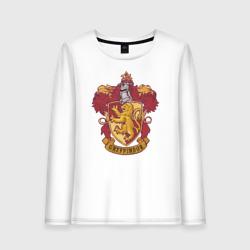 Coat of gryffindor