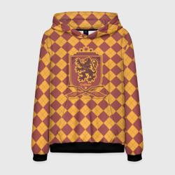 Coat of Gryffiindor
