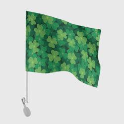 Ирландский клевер