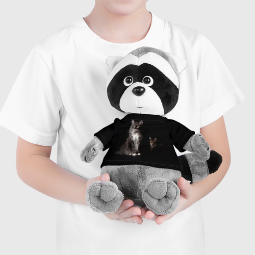 Енотик в футболке 3D Котики Фото 01