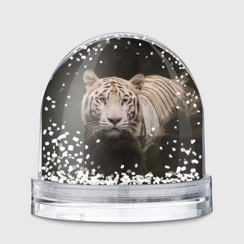 Снежный шар Белый тигр Фото 01