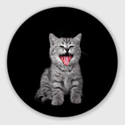 Кричащий кот.