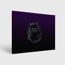черный кот на фиолетовом фоне