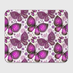 Фиолетовые бабочки
