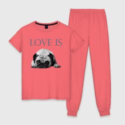 Любовь - это мопс