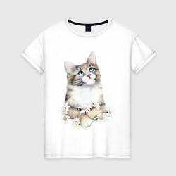 Котенок с ромашками
