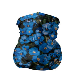 Поле синих цветов фиалки лето