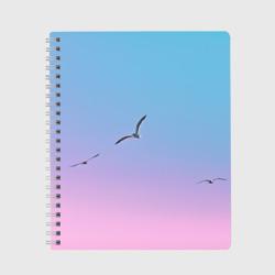 чайки птицы полет градиент