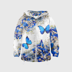 Butterfly | Blue White