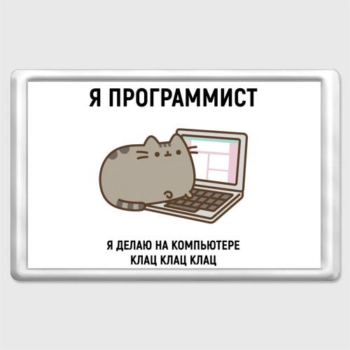 Pusheen программист
