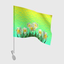 Солнечные Нарциссы
