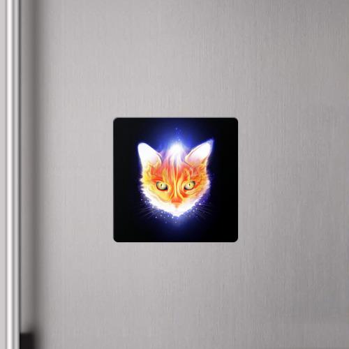 Магнит виниловый Квадрат Сеяющий кот Фото 01