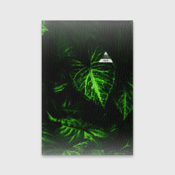 Листья зеленые CODE ERROR 404