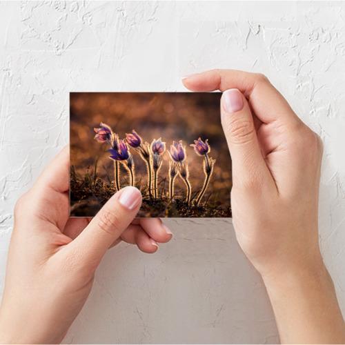 Поздравительная открытка Цветы Фото 01