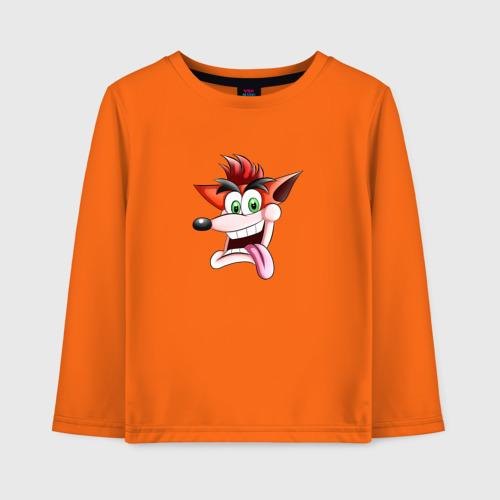 Crash Bandicoot Face