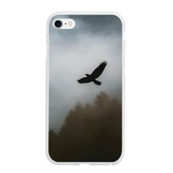 Орёл над лесом