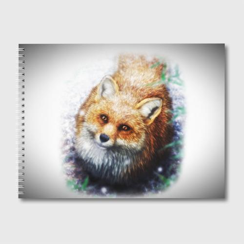 Альбом для рисования Лиса Фото 01