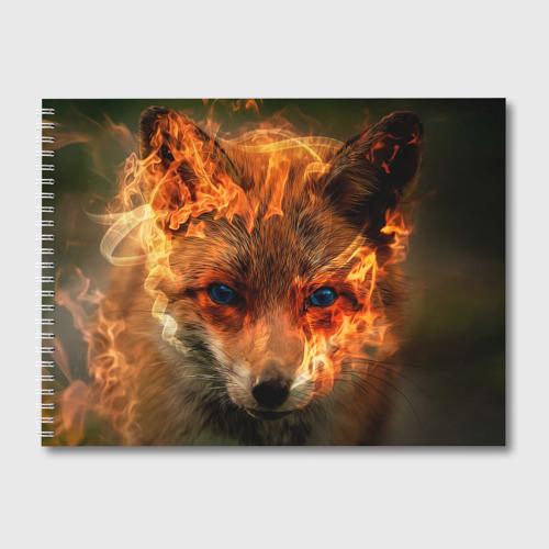 Альбом для рисования Огненная лиса Фото 01