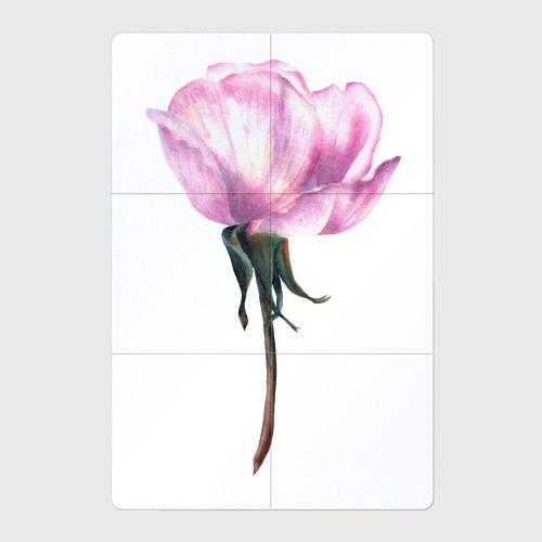 Магнитный плакат 2Х3 Нежность розы Фото 01